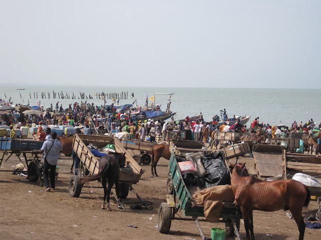 Puerto de M´bour (Senegal 2013)