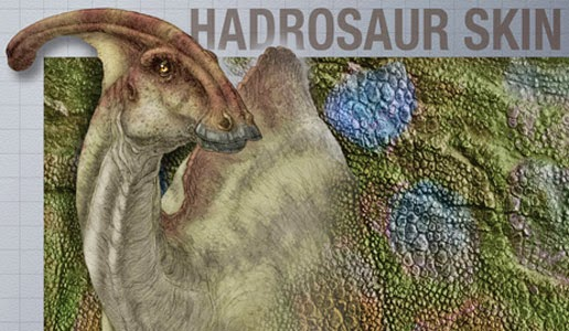 Palaeontology: Thick-skinned dinosaur gets the last laugh