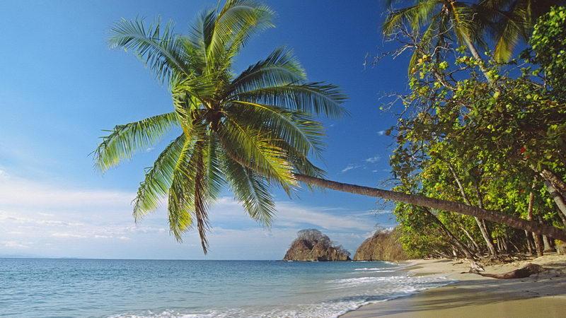 natural beach pretty wallpaper - photo #12