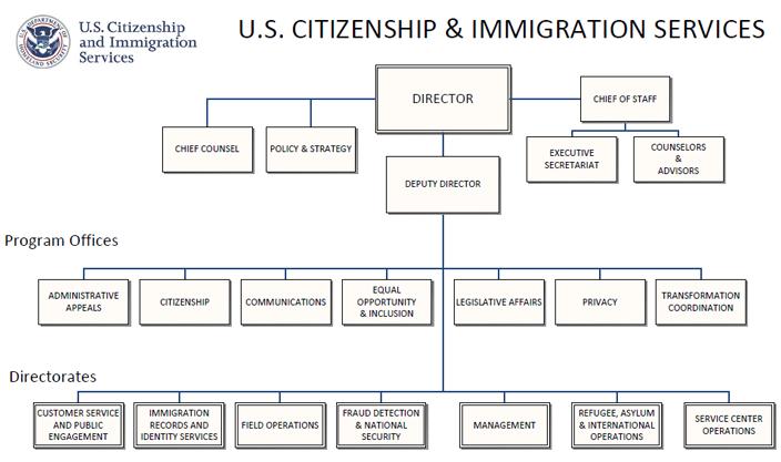 Free DHS Organizational Chart templates