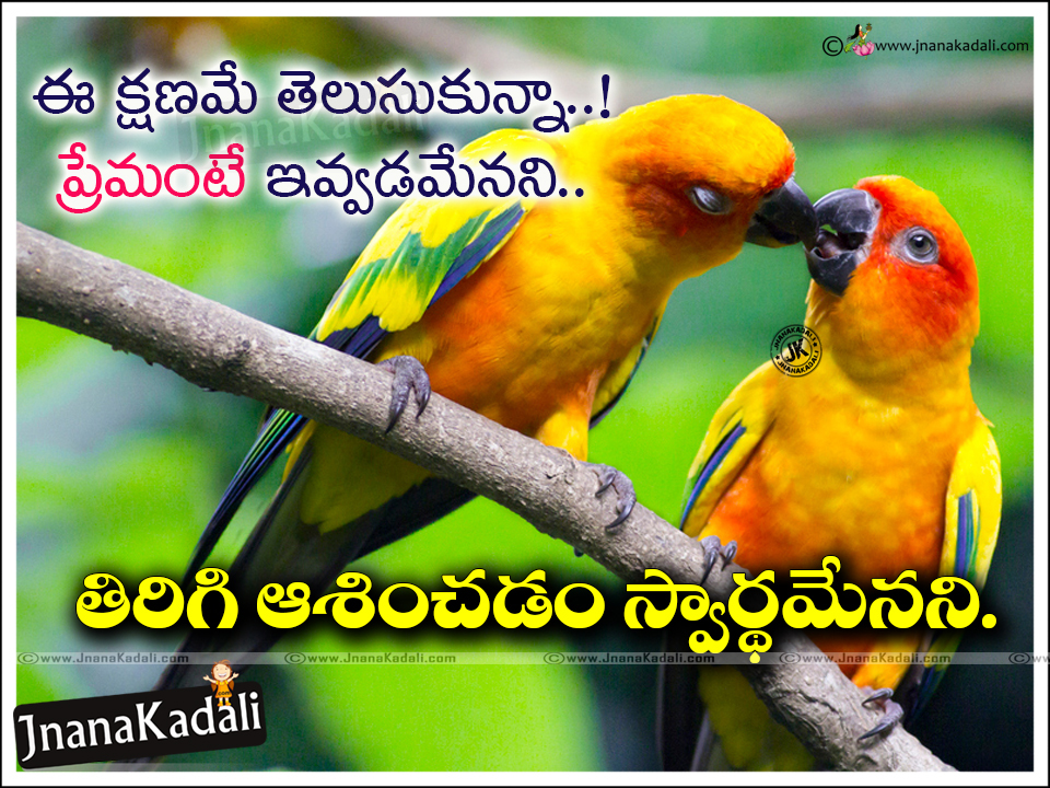 Telugu Love Quotes 14 Heart Touching Gotteamdesigns