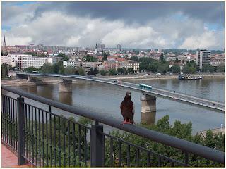Varadinski most