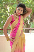 pavani new photos in saree-thumbnail-8