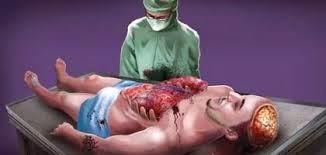 #Autópsia, Como é Feita uma Autópsia?