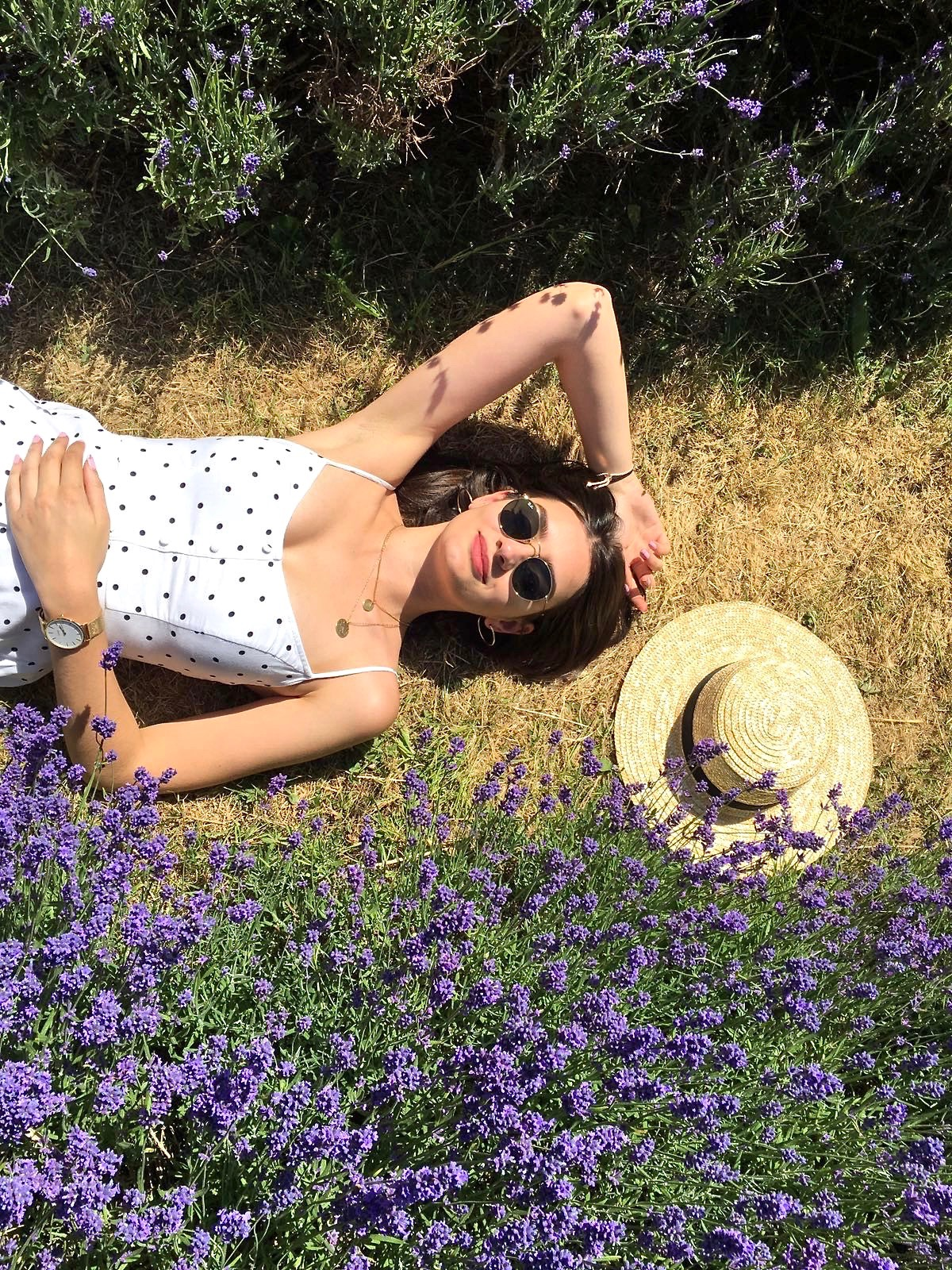mayfield lavender field london