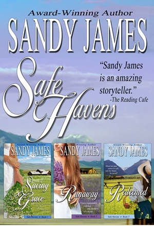 Safe Havens Bundle (Sandy James)