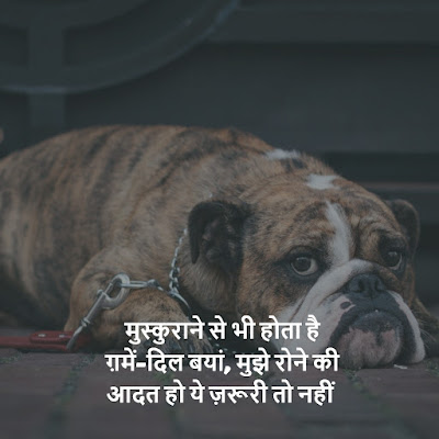 new Sad Status About Life in hindi