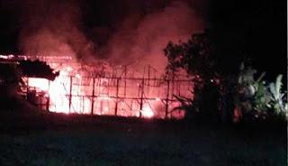 Puluhan ribu ayam di Karawang hangus terbakar