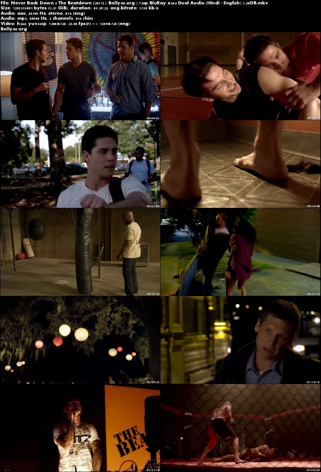 Never Back Down 2 The Beatdown 2011 BRRip 300MB Hindi Dual Audio 480p Download