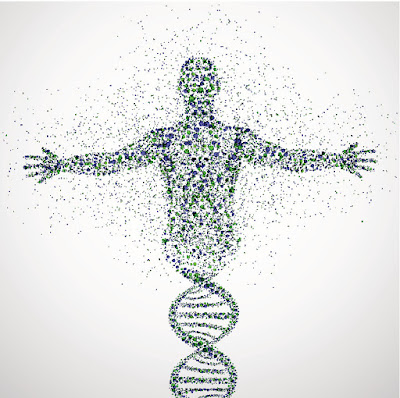 gene later turning into a complete human thereby depicting regenerative medicine