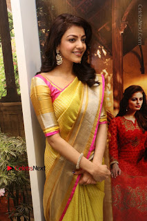 Actress Kajal Agarwal Stills in Golden Silk Saree at Trisha Sesigner Store Launch  0060.jpg