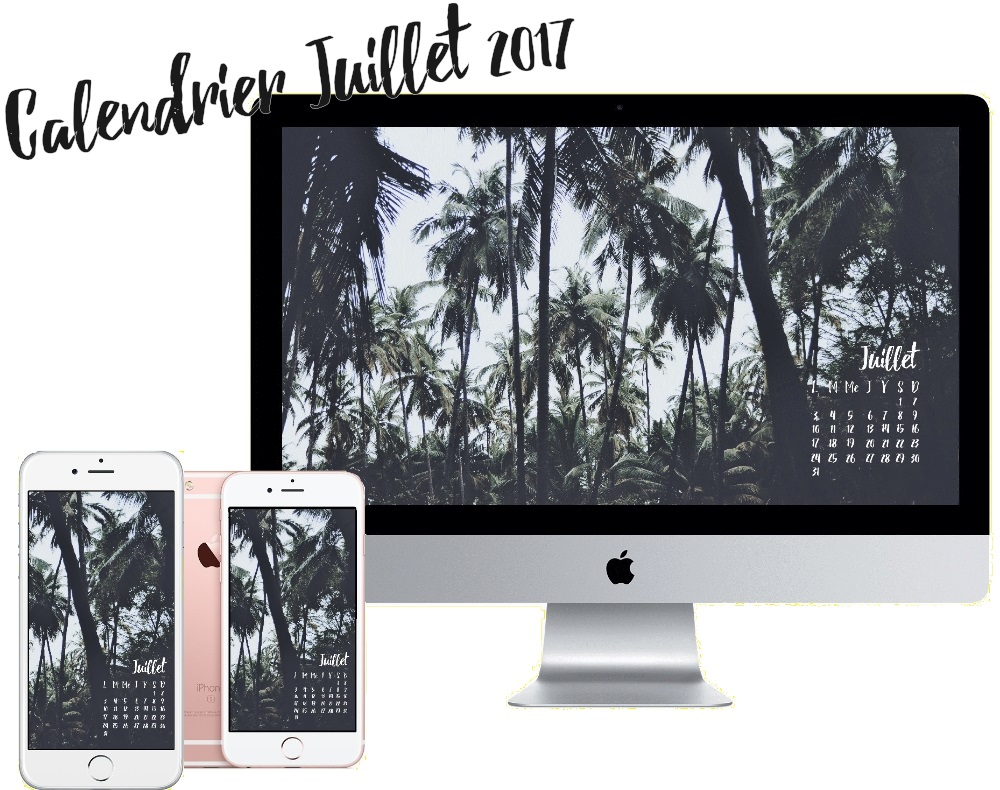 fond d cran d 39 ordinateur d 39 iphone calendrier juillet palm trees pauline dress blog mode. Black Bedroom Furniture Sets. Home Design Ideas