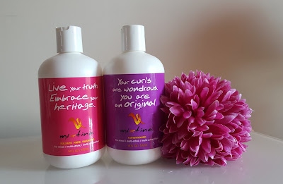 Mixtina Shampoo & Conditioner Review