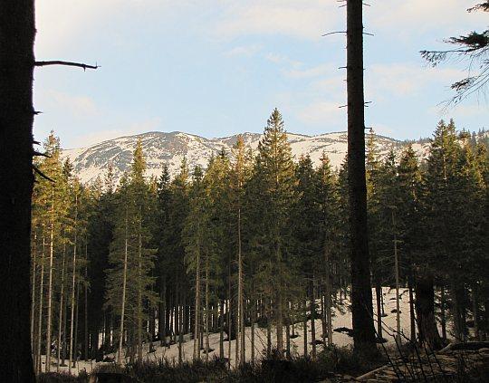 Spojrzenie na Babią Górę, przez którą wiedzie nasz kolejny odcinek Głównego Szlaku Beskidzkiego