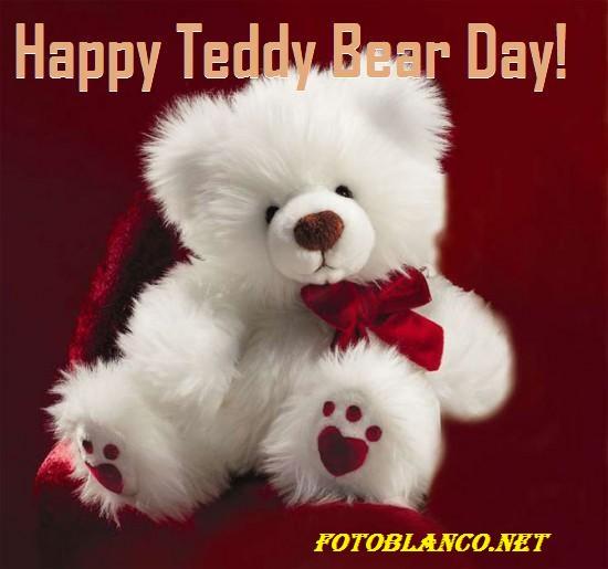 HAPPY TEDDY DAY 2016 - FOTOBLANCO