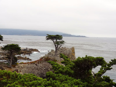 17 Mile Drive Lone Cypress