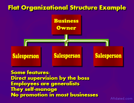 Small business structure flat organizational also major structures explained afidated rh