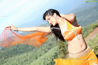 Actress Richa Panai latest hot navel show photos