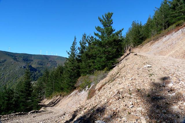 Pista de subida al Pico Balongo - Ruta del Silencio