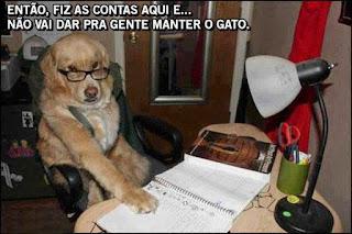 Foto de um cachorro da raça Golden, com pelos lisos e amarelados. Ele usa óculos de grau apoiado no focinho e olha para a câmera por cima do aro dos óculos. O cão está sentado em uma cadeira de escritório em frente a uma mesa com abajur, porta lápis e um caderno com anotações, aonde ele apoia a pata direita. Acima, em letras brancas, lê-se: Então, fiz as contas aqui e...não vai dar pra gente manter o gato.