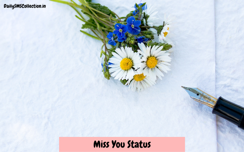 Top 100 Miss You Status in Hindi 2018 {Missing Her/Him? Check It Out!}