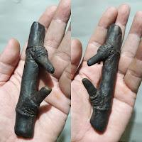 Fosil Bambu Pethuk