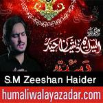 http://www.humaliwalayazadar.com/2017/09/sm-zeeshan-haider-nohay-2018.html