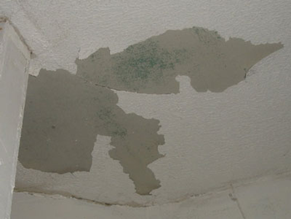 Major Repairing Water Damaged Walls