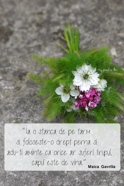 citat Maica Gavrilia stanca buchet flori gradina spice
