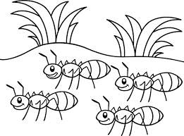 Ant Colony Coloring Pages