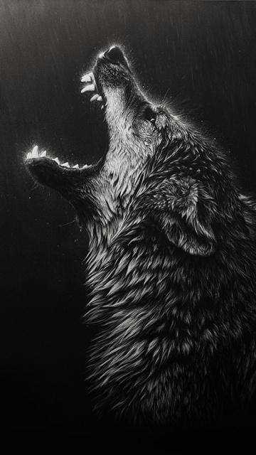 Wolf Wallpaper Mobile Phone Kadadaorg