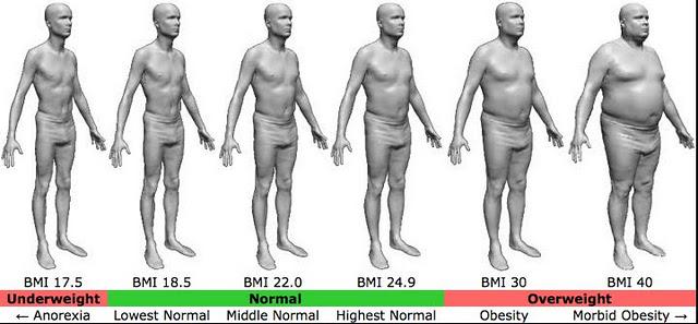 Hong Kong-Born American Doctor Ideal BMI - 33 bmi