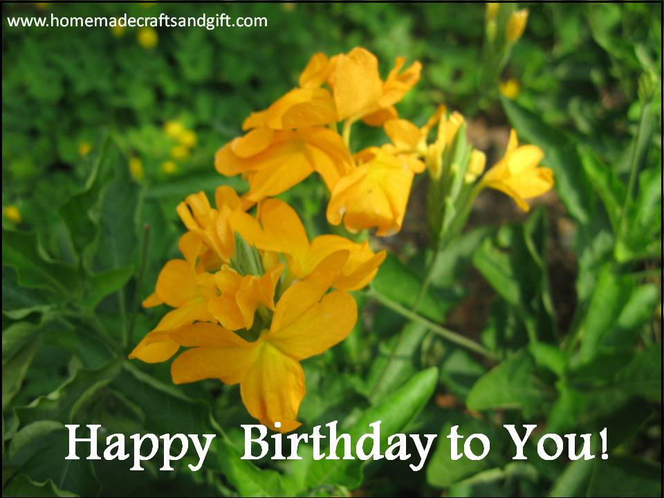... Calendars, Bookmarks, Cards: C. Free Happy Birthday Card free download
