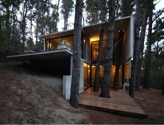 สร้างบ้านใกล้ต้นไม้ใหญ่