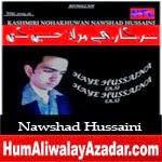 http://audionohay.blogspot.com/2014/10/nawshad-hussaini-nohay-2015.html