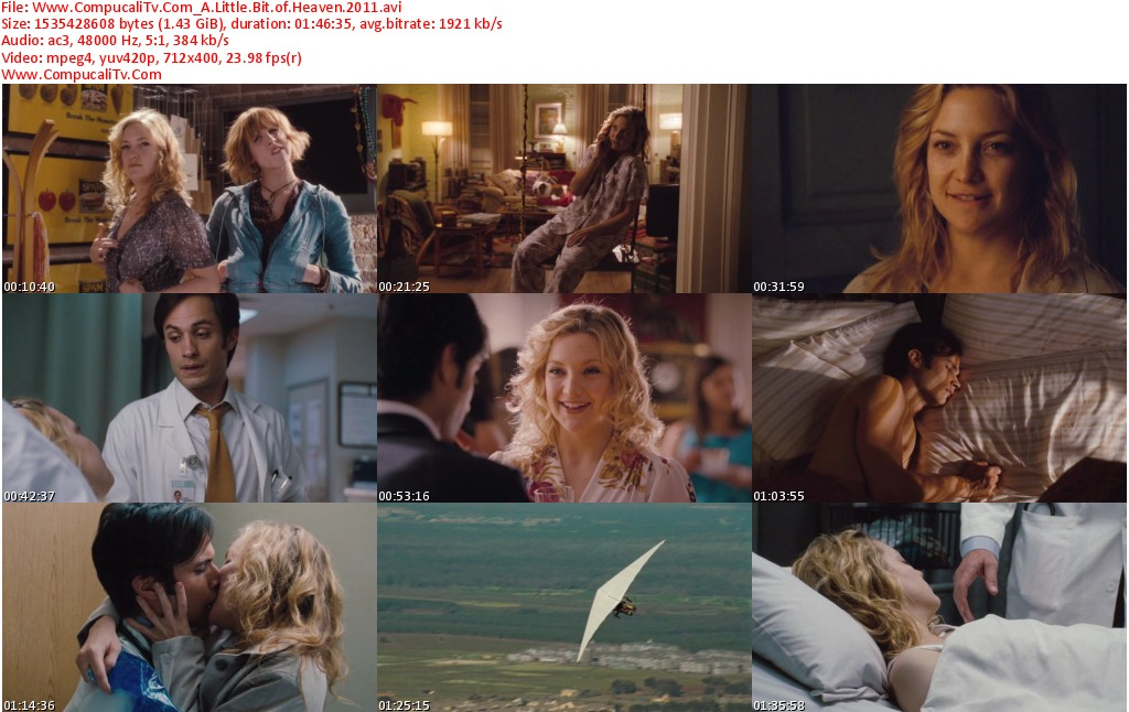 A Little Bit of Heaven 2011 [DVDRip] Subtitulos Español Latino Descargar [1 Link]