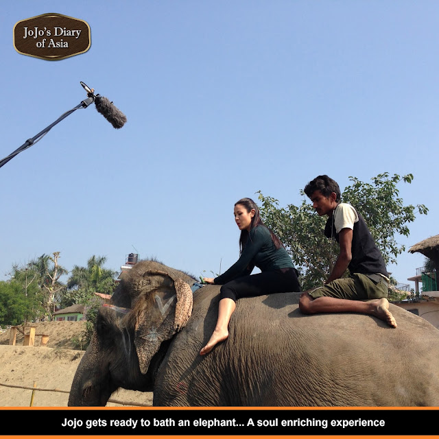 "Jojo gets ready to bath an elephant. A soul enriching experience - ""Jojo's Diary of Asia"""