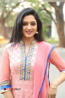 Actress Vimala Raman Stills in Beautiful Pink Salwar Kameez at (ONV) Om Namo Venkatesaya Press Meet  0050.JPG