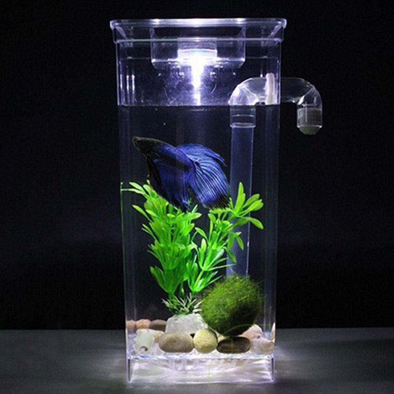 Top Betta Fish Aquarium Decor Secrets