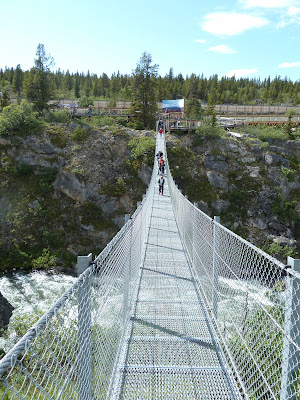 View from the Yukon Suspension Bridge in Canada on an Alaska cruise excursion