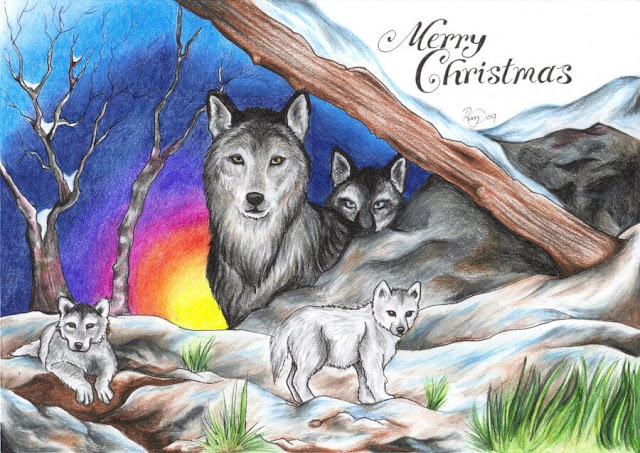Xmas images with animals