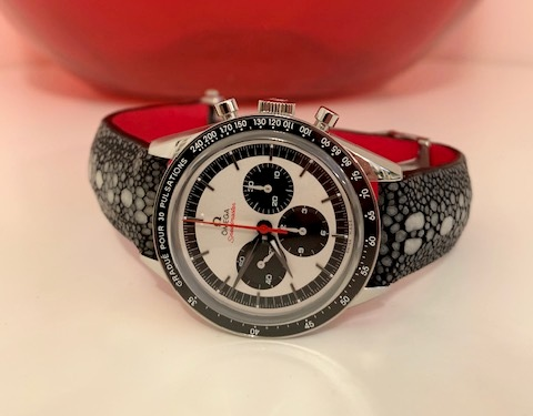 Vincenzo's Panda Dial Omega Speedmaster on Matte finished Black Row Stone Stingray
