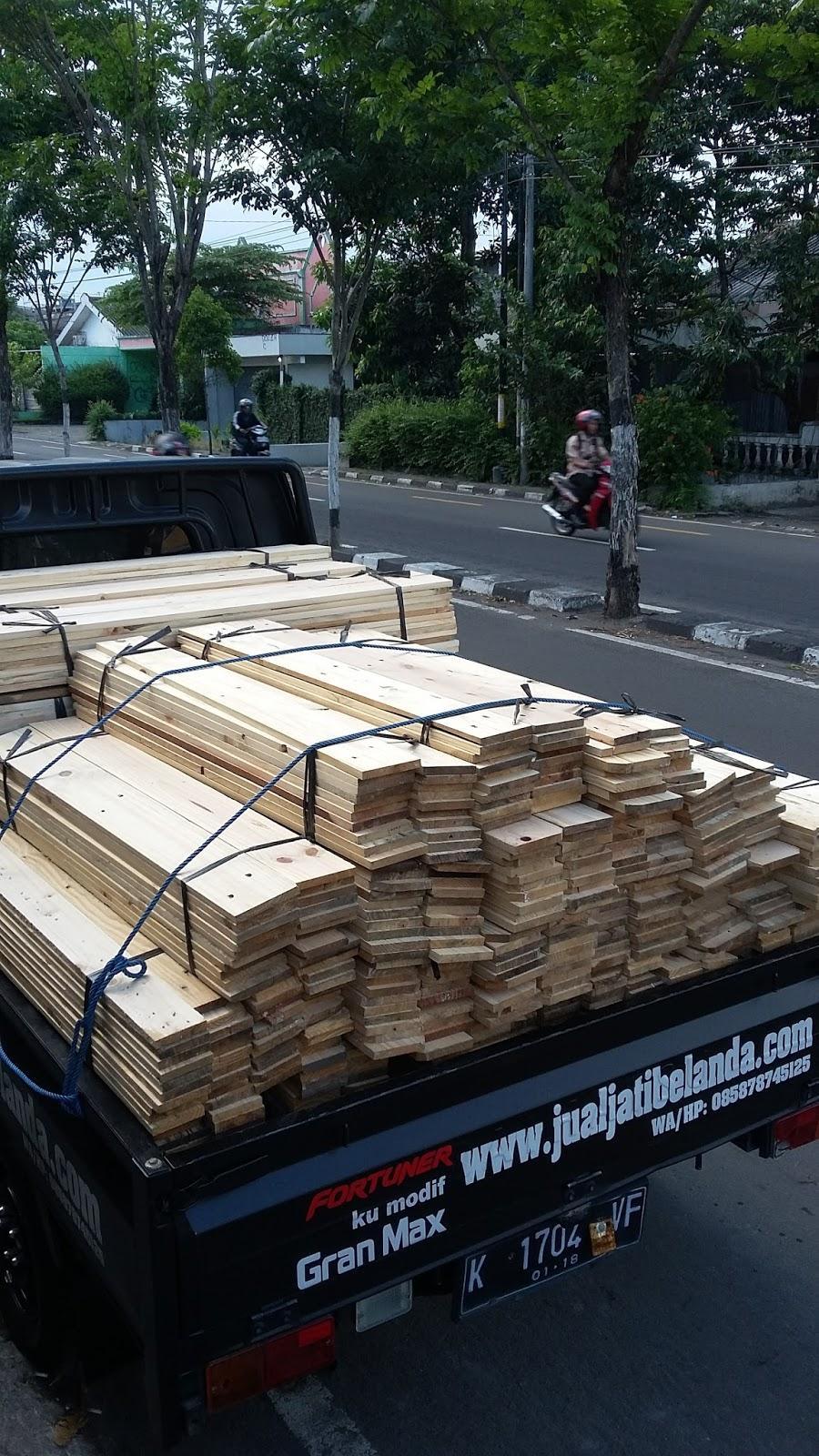 Jual Kayu Jati Belanda Murah Pinus Jogja Jual Jati Belanda