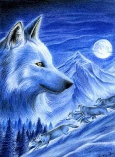 A farkas a Hold energiát képviseli