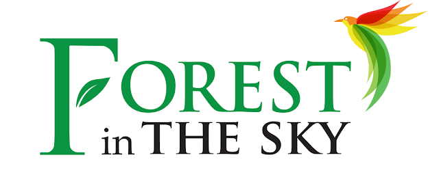 logo forest in the sky
