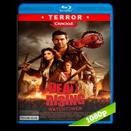 La rebelión de los muertos (2015) Full HD 1080p Audio Dual Latino-Ingles
