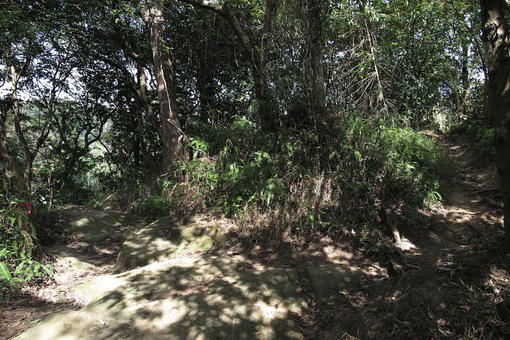 右邊通往文間山(劍南路、劍南蝶園、捷運劍南站),左側通往圓山風景區、劍潭。