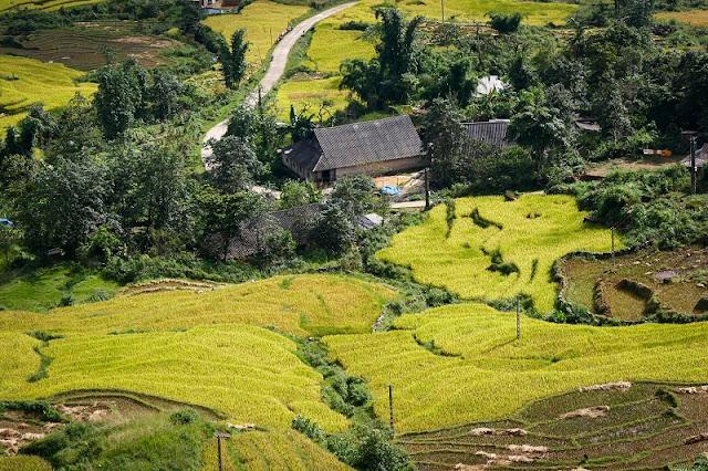 Lao Cai, key tourism destination of northwestern region 3