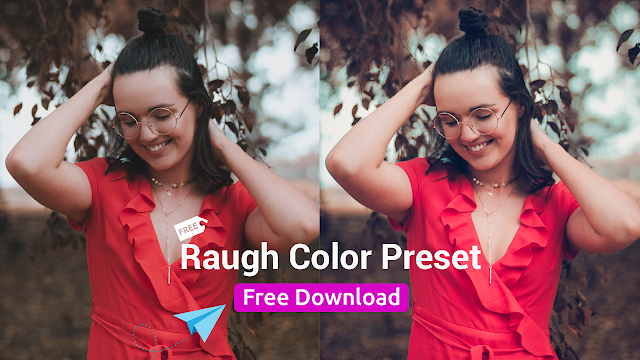 Cover%2BPicture Why People Don't Use Camera RAW FILTER | Raugh Color Effect Preset Free Tutorial