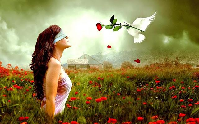 Resultado de imagem para DESPERTANDO O CONHECIMENTO - DHARMA - Viver em Harmonia com a Leis Divinas e Universais